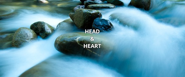 Balance your head and heart